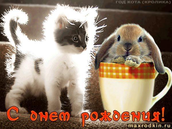 Открытки с кроликом и котом, музыкальные открытки