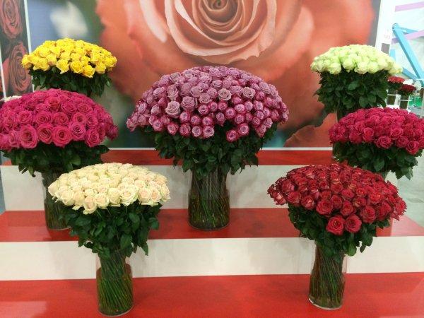 Свадебный, купить живые цветы оптом в челябинске