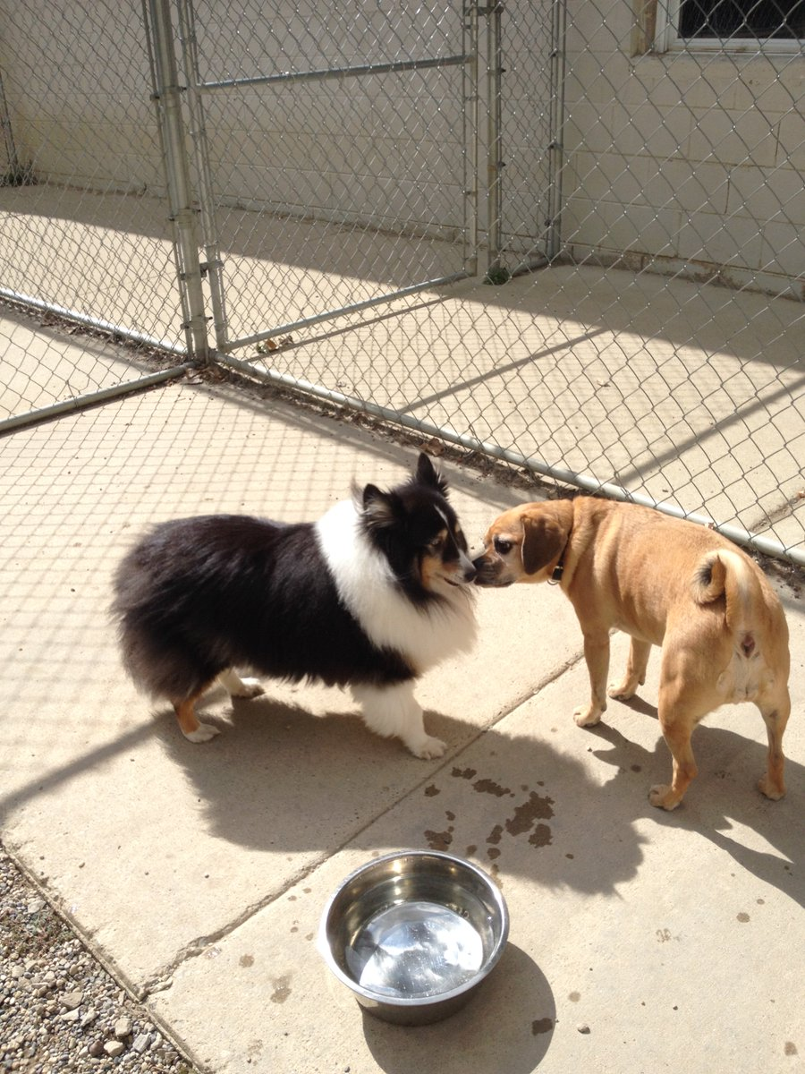 Olive tells Libby some secrets!