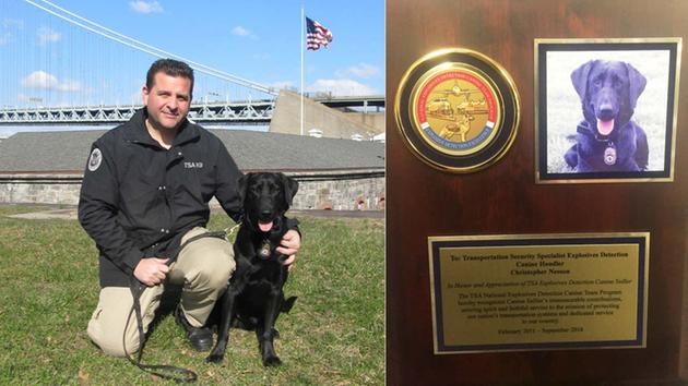 Explosive-detecting TSA dog named after 9/11 hero retires