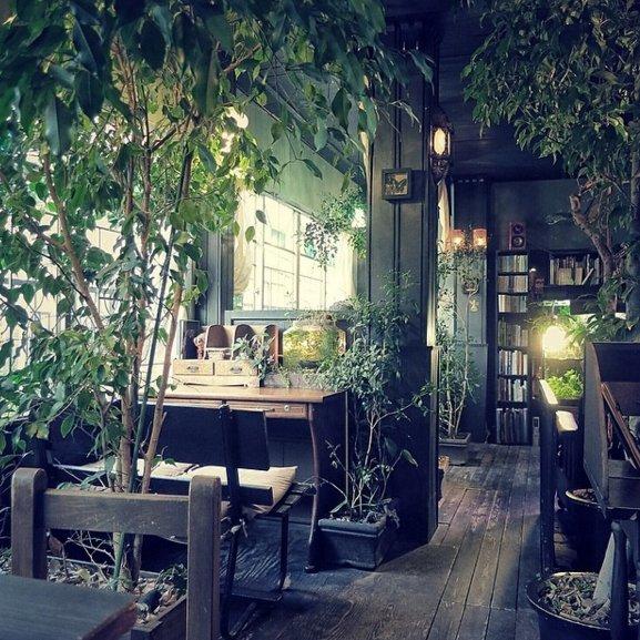 アール座読書館(東京)  まるでジブリの世界に迷い込んだかのような店内。私語厳禁なため、大きな声での会話や、小さな声でも周囲の人たちが気になってしまうような長い話は禁止されています。