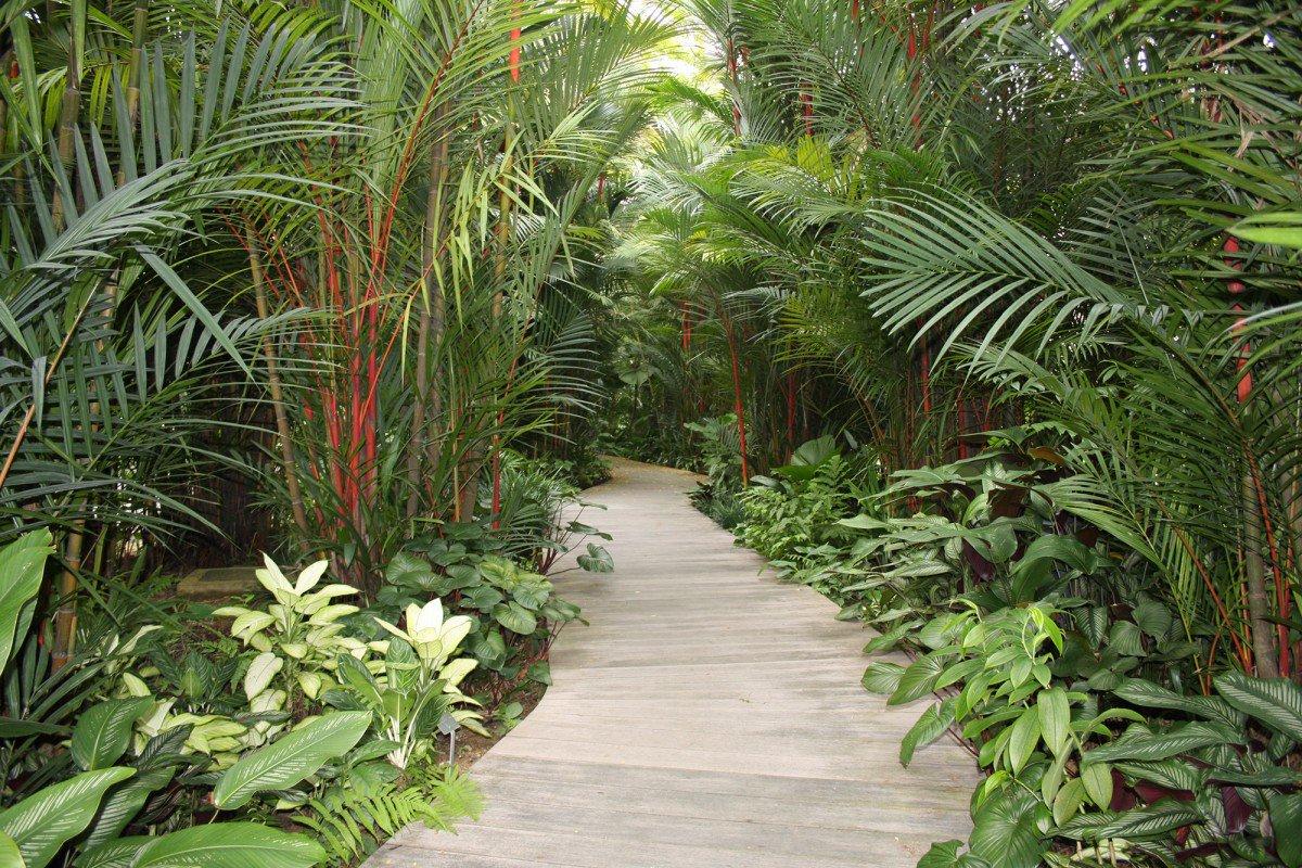Jardins de babylone jardinsbabylone twitter for Jardin botanique singapour