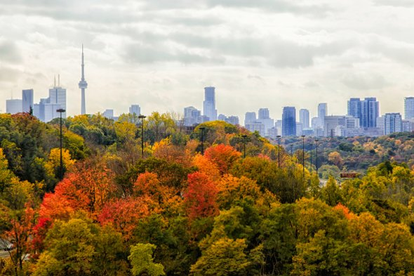 Toronto will be getting warm weather long into fall