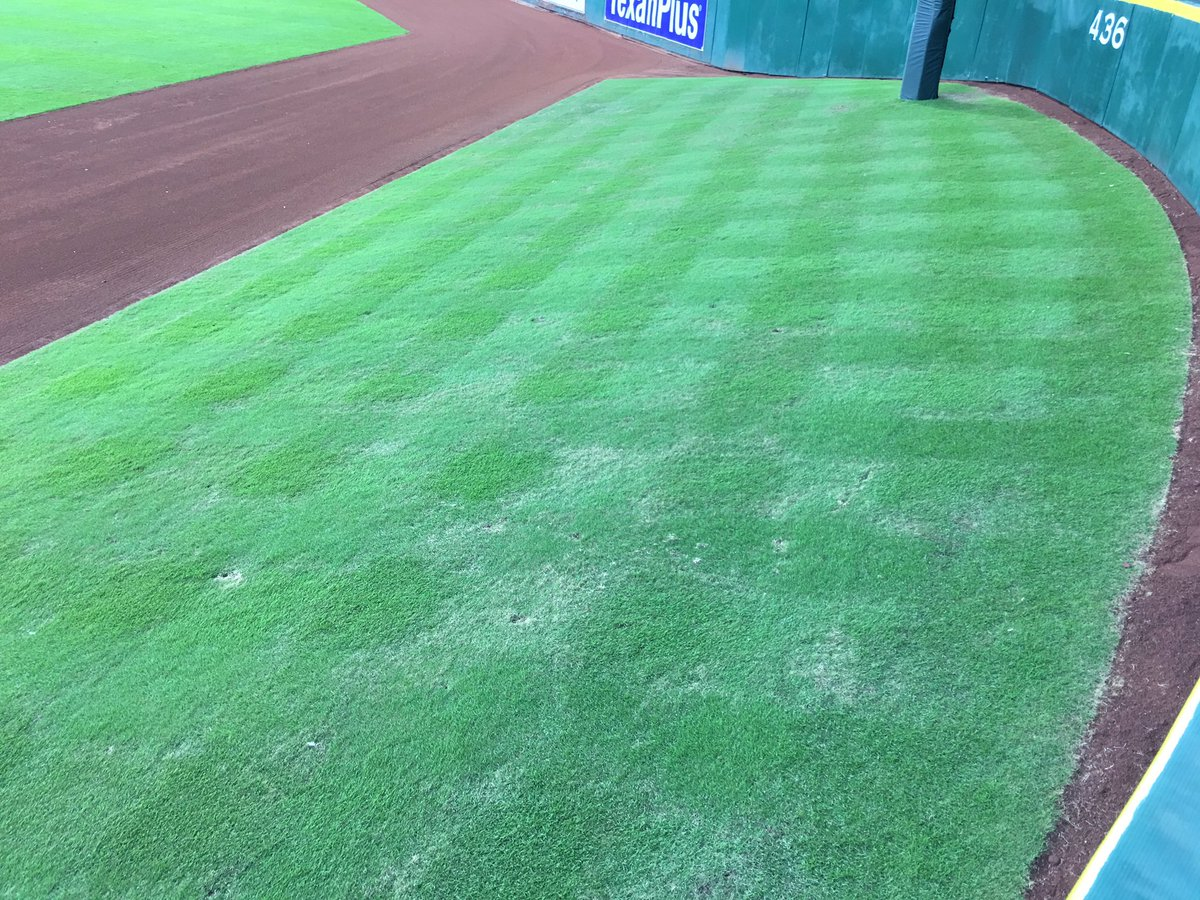 Say goodbye to our little friend. #Astros #TalsHill https://t.co/pUMFvSG5Zf