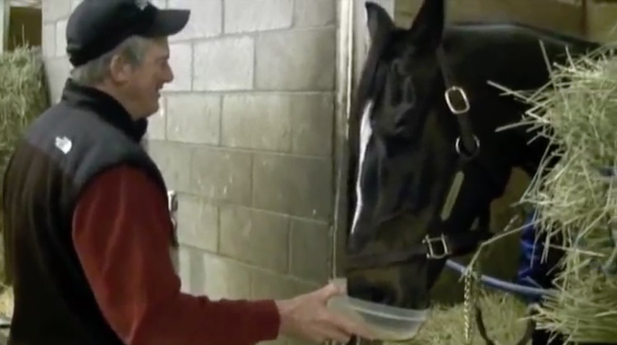 RT @BreedersCup: Queen #Zenyatta used to cap her day of with an ice cold Guinness #NationalDrinkBeerDay https://t.co/hopb1Fp4B8