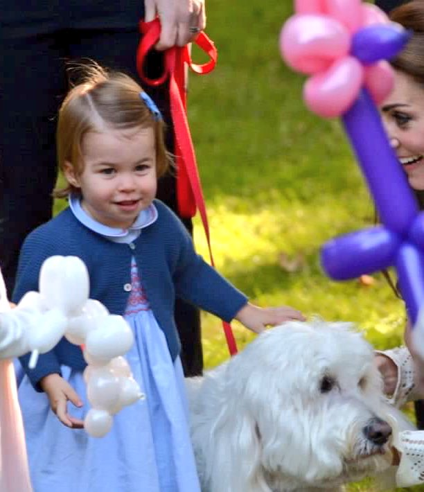 Katie On Twitter Princess Charlotte Looks So Much Like