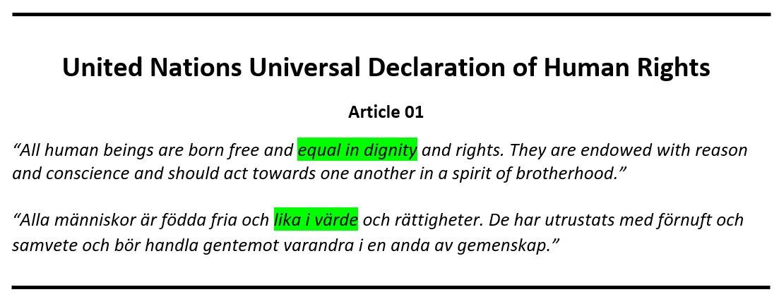 """Sverige i ett nötskal. Vårt mest använda begrepp, """"allas lika värde"""", kommer ur en felöversättning av FN:s mänskliga rättigheter."""