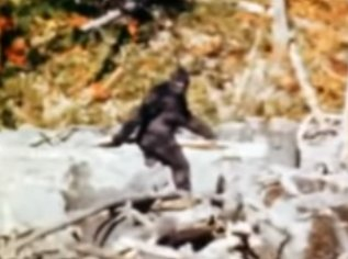 'Bigfoot' expert says creature highly likely present in Oklahoma >>