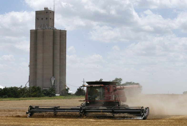 Wheat sits at its lowest in decade; storage remains tight