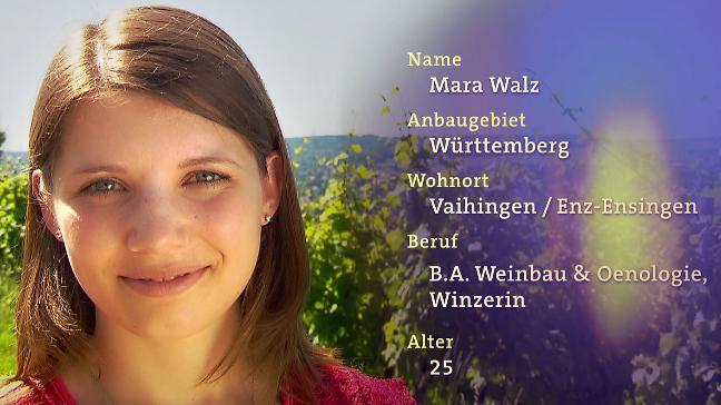 Thronanwärterin für die Deutsche Weinkönigin: Mara Walz aus Württemberg  https://t.co/TxP89AZi99 #wddw https://t.co/HFyJqGGir7