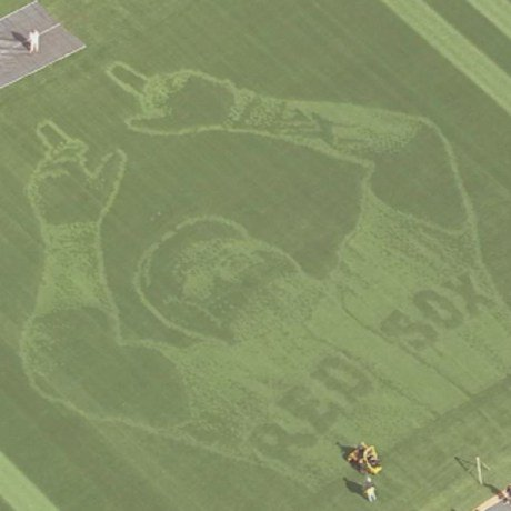 David Ortiz's Face Mowed into the Grass atFenway