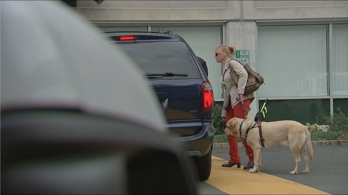 Blind woman says some Uber drivers refuse rides because of her service dog