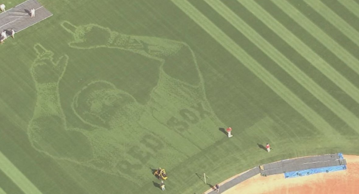Have we reached peak Papi? The grass at Fenway was mowed to look like his face
