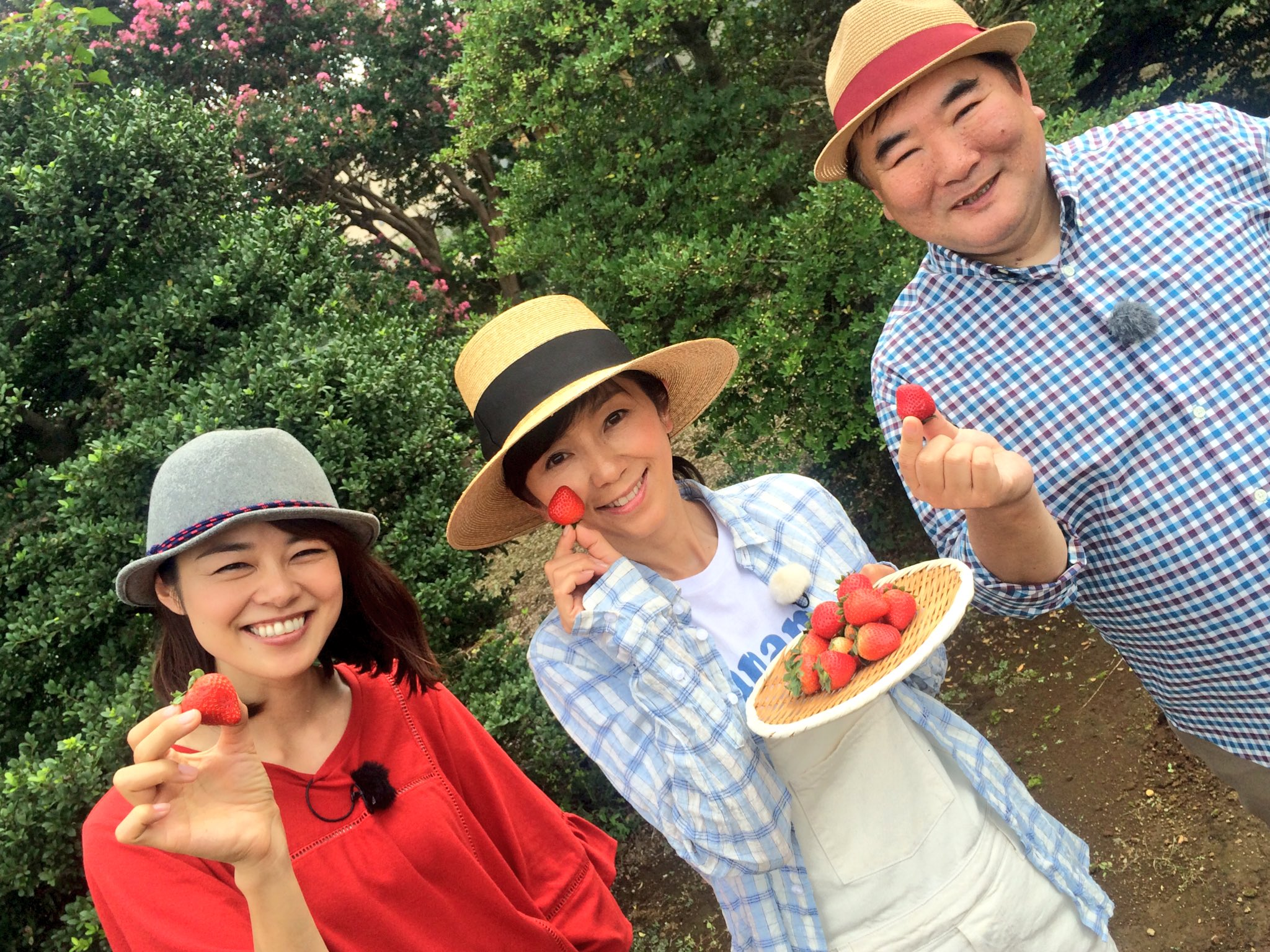 NHK 趣味の園芸 6%OFF | NHK出版 | Fujisan.co.jp …