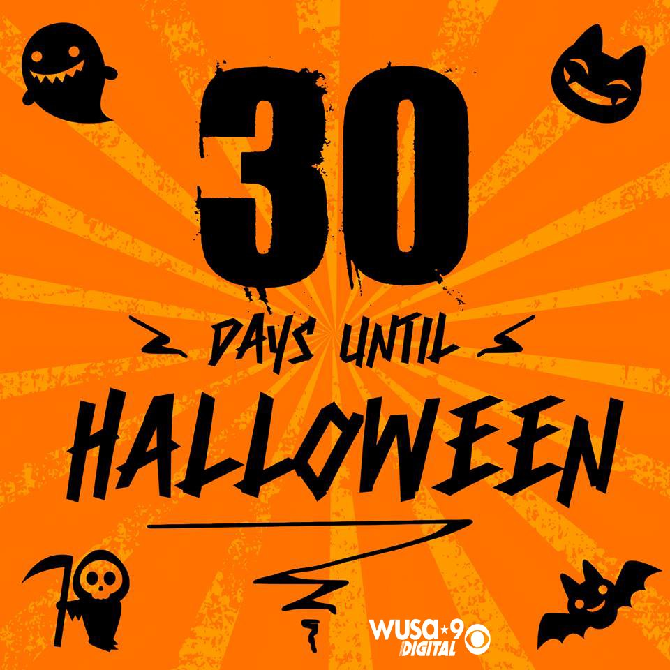 Are you ready for Halloween?