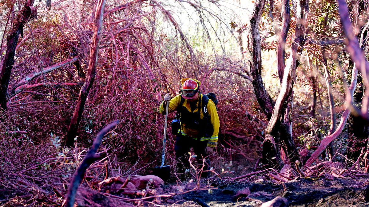 How Monterey County wildfire became one of costliest to fight