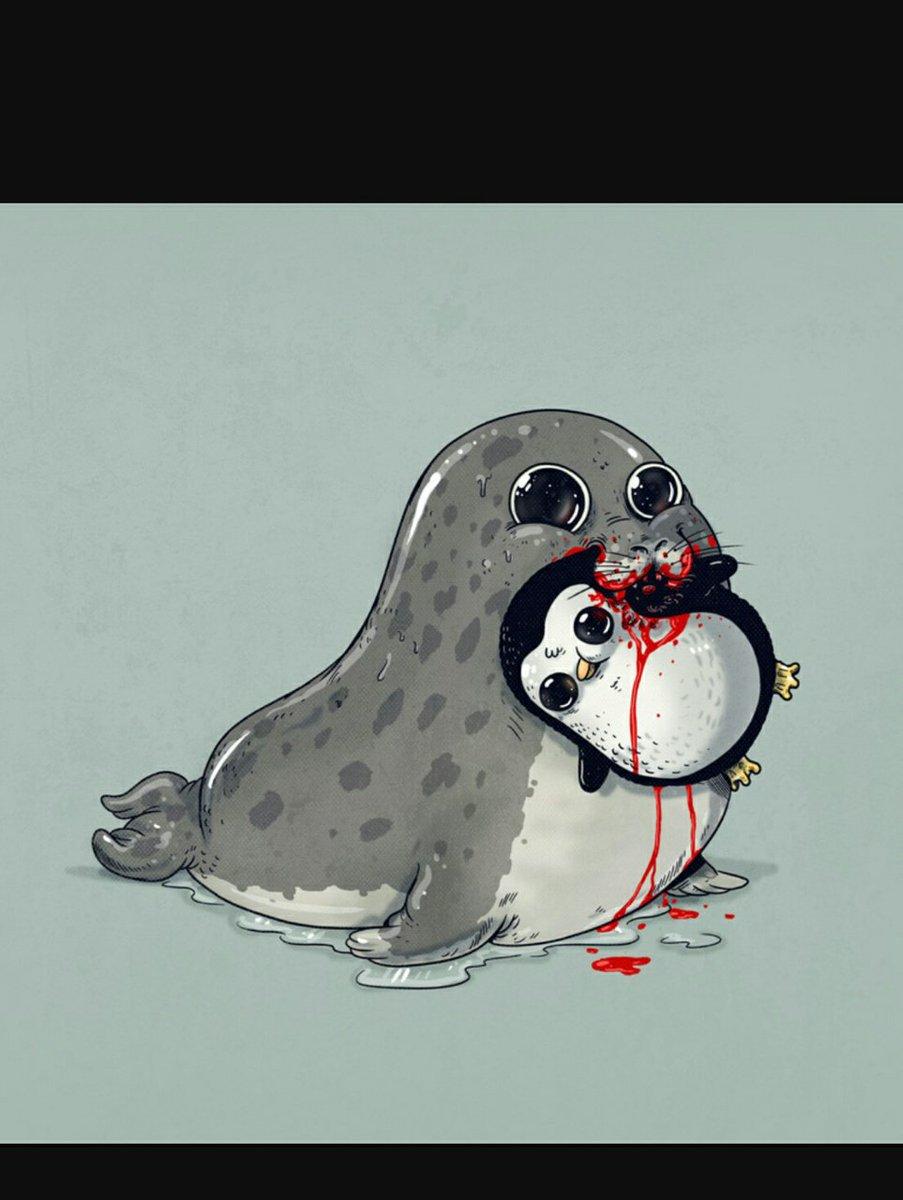 милые рисунки тюлень своих свежих фото