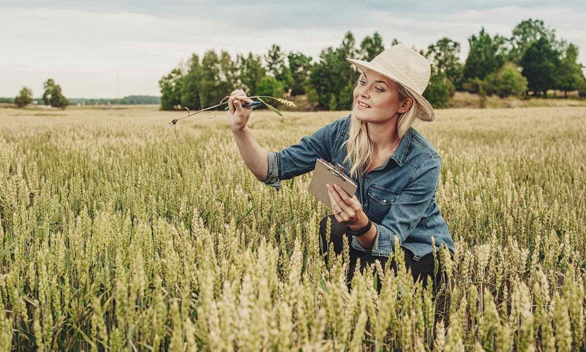 Meet 25 women making a huge impact in the food system: https://t.co/mQrrS3UQyT https://t.co/6knOBRY93W via @DaniNierenberg