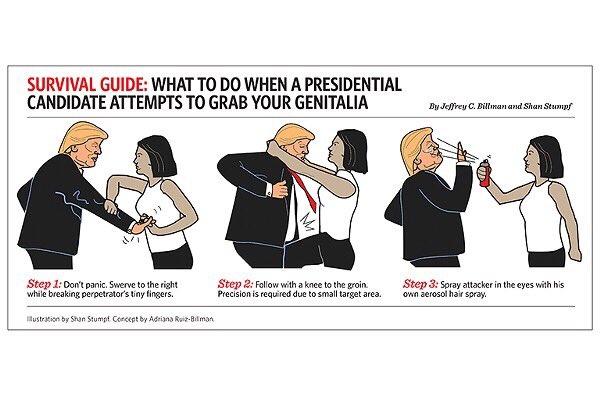 What to do when a presidential candidate attempts to grab your genitalia.   #ImWithHer https://t.co/Sft9bCWCza