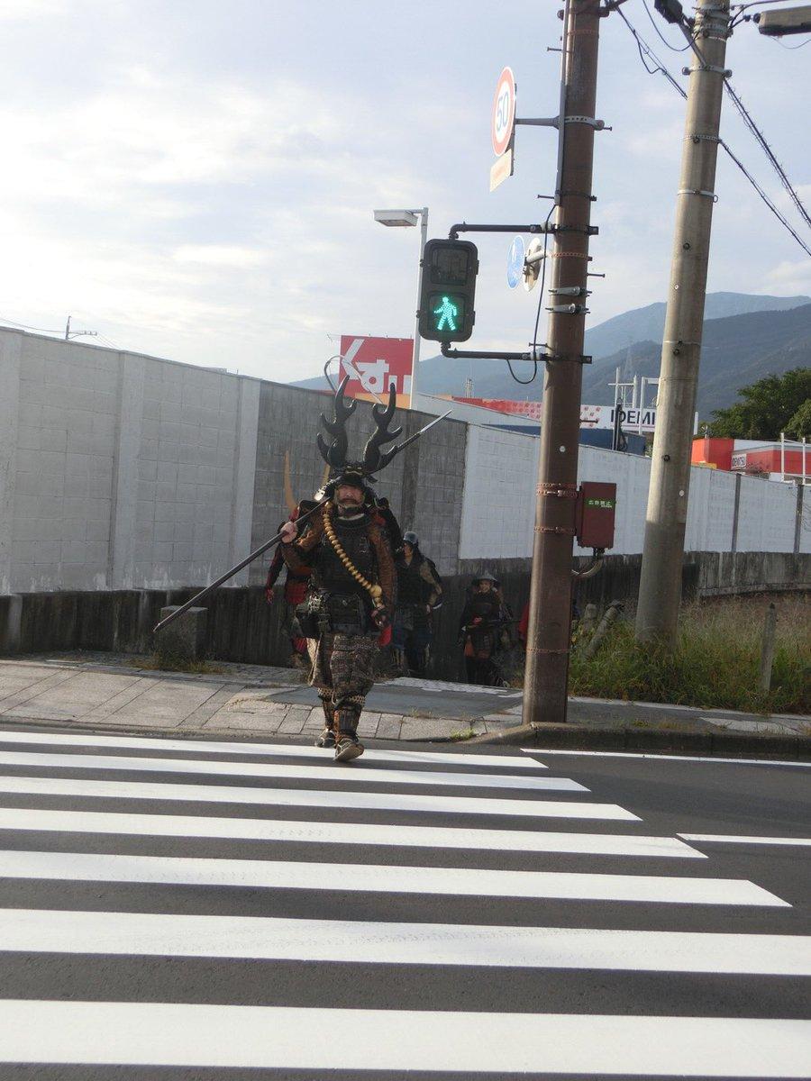 横断歩道を悠々と渡る戦国最強 https://t.co/9YnqmWHzWG