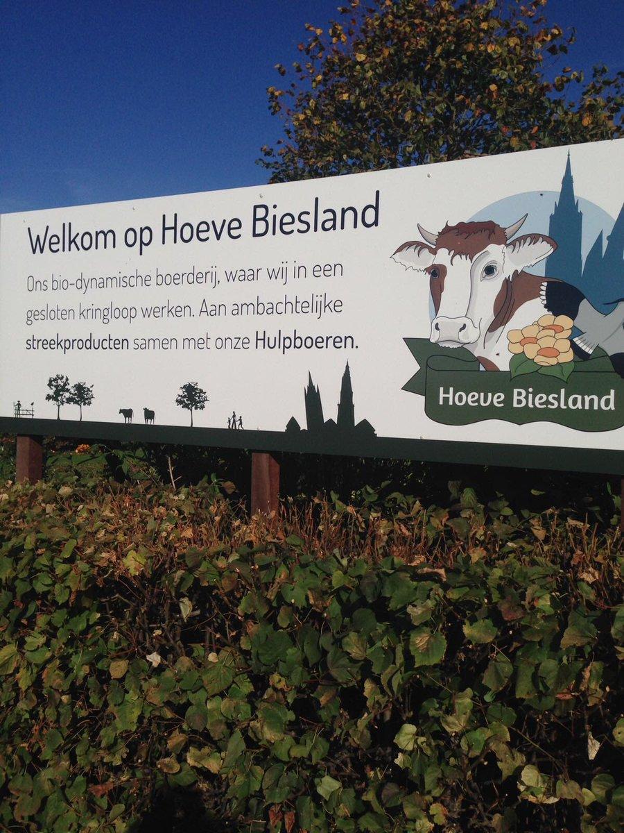 Kringloop delfgauw