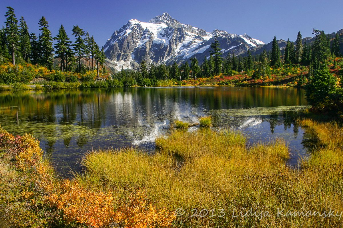 Fall at Picture Lake.  Autumn colors line the shoreline of beautiful Picture Lake, with Mount Shuksan in the distance.  #picturelake #fall<br>http://pic.twitter.com/ZUsx98W3hc