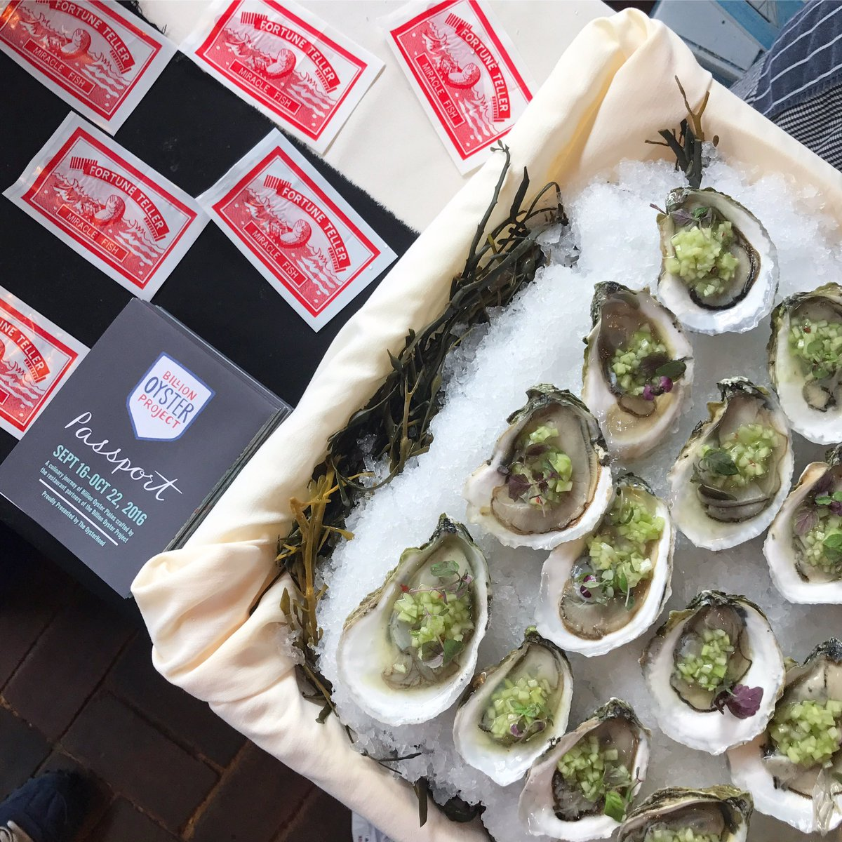 Oyster Bash is on! Chef Mike is serving up Mystic oysters with a cucumber-ginger mignonette and red shiso #NYCWFF https://t.co/3bFN9US3pD