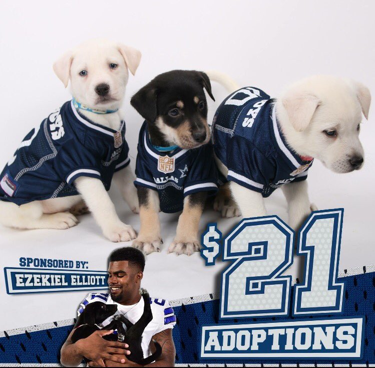 new style 0ac51 f647d Ezekiel Elliott on Twitter: