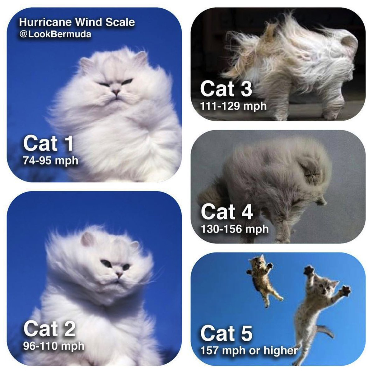 A handy visual guide to hurricane categories. #HurricaneMatthew is Cat 4. via @lookbermuda https://t.co/W24RSoplLC