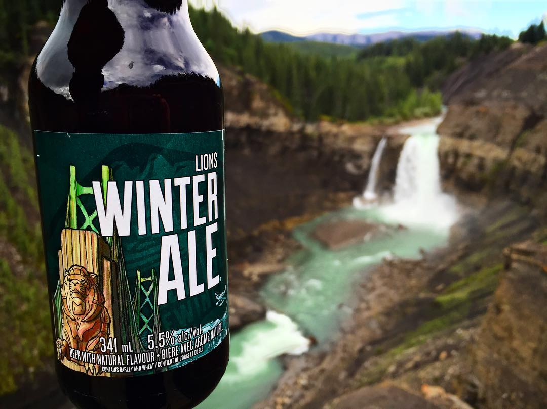 Retweet if you're ready for #LionsWinter Ale to return! Picture: Ivan Babiuk https://t.co/TR6EjfZgyE