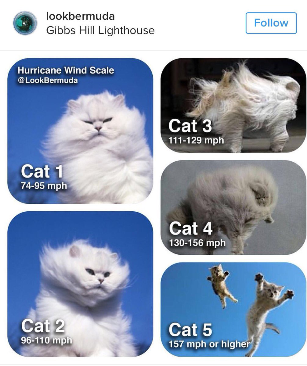 For those of you not familiar with hurricanes, here's an explanation of the wind scale https://t.co/VJ0W7ub6v2