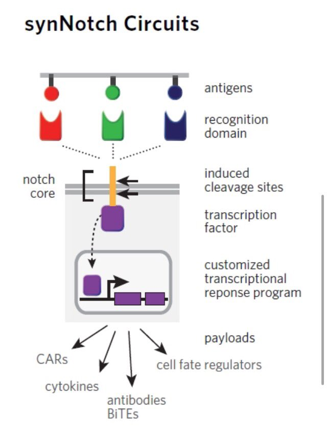 epub enzyme systems that metabolize drugs and other xenobiotics 2001