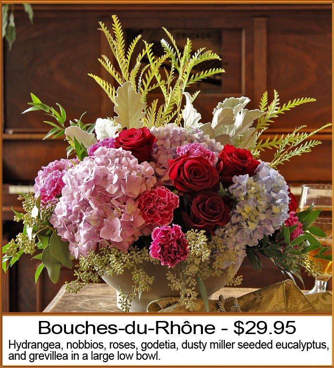 "Oberers Flowers On Twitter: ""Stunning! Bouchers Du Rhone"