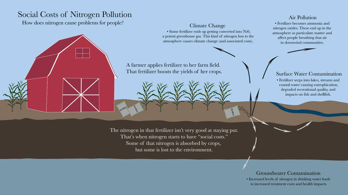 nitrogen as a fertilizer nutrient or pollutant Nutrient pollution is the process where too many nutrients, mainly nitrogen and phosphorus, are added to bodies of water and can act like fertilizer they can occur naturally as a result of weathering of rocks and soil in the watershed and they can also come from the ocean due to mixing of water.