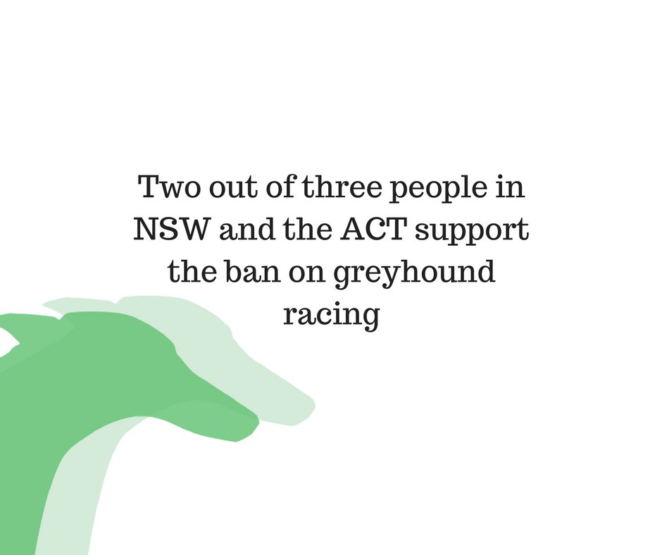 Two out of three people in NSW and the ACT support the ban on greyhound racing #backtheban https://t.co/MMr1e81ozL https://t.co/7mVvs9HlMO