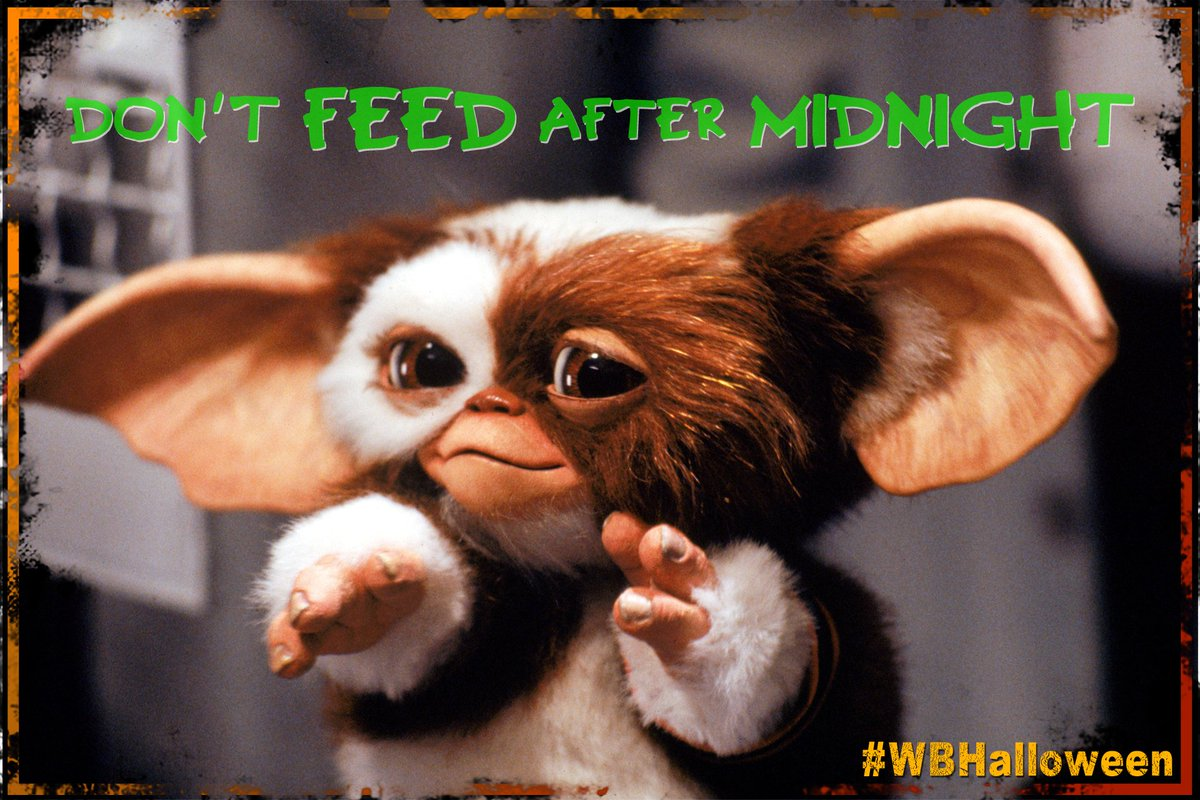 "Cult Labs on Twitter: ""DON'T feed Gizmo after midnight! Stay up ..."