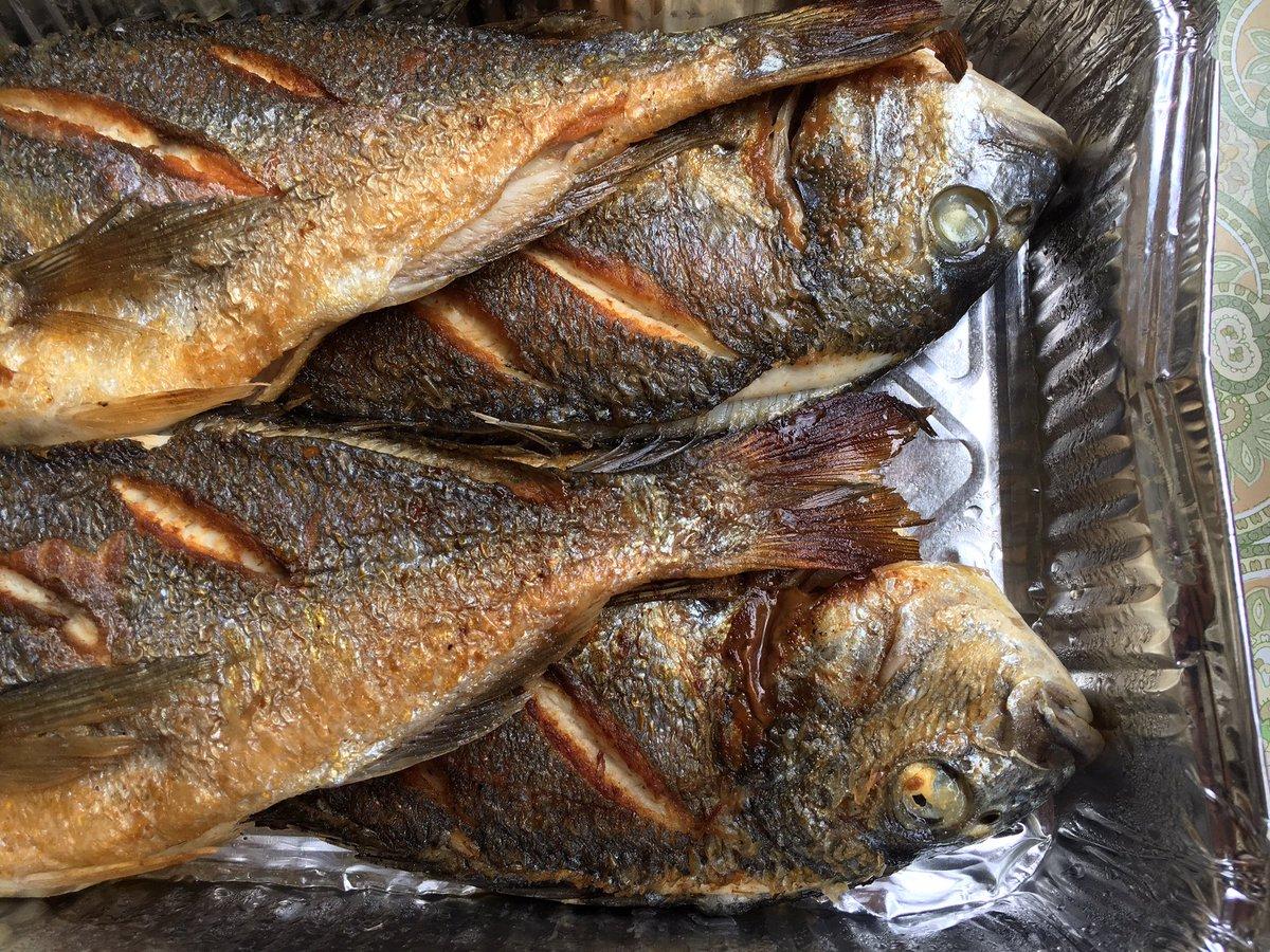 Kristoff Kuczynski On Twitter Koce Peshk Gilt Head Sea Bream