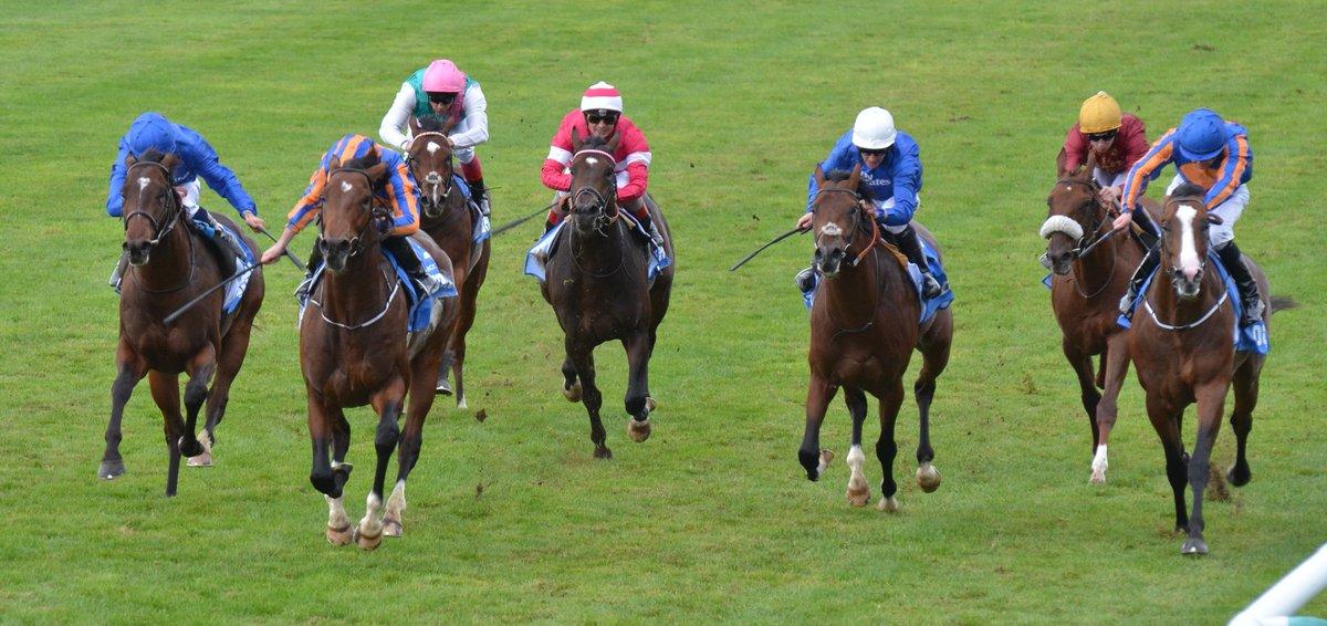 Churchill - Dewhurst Stakes 2016