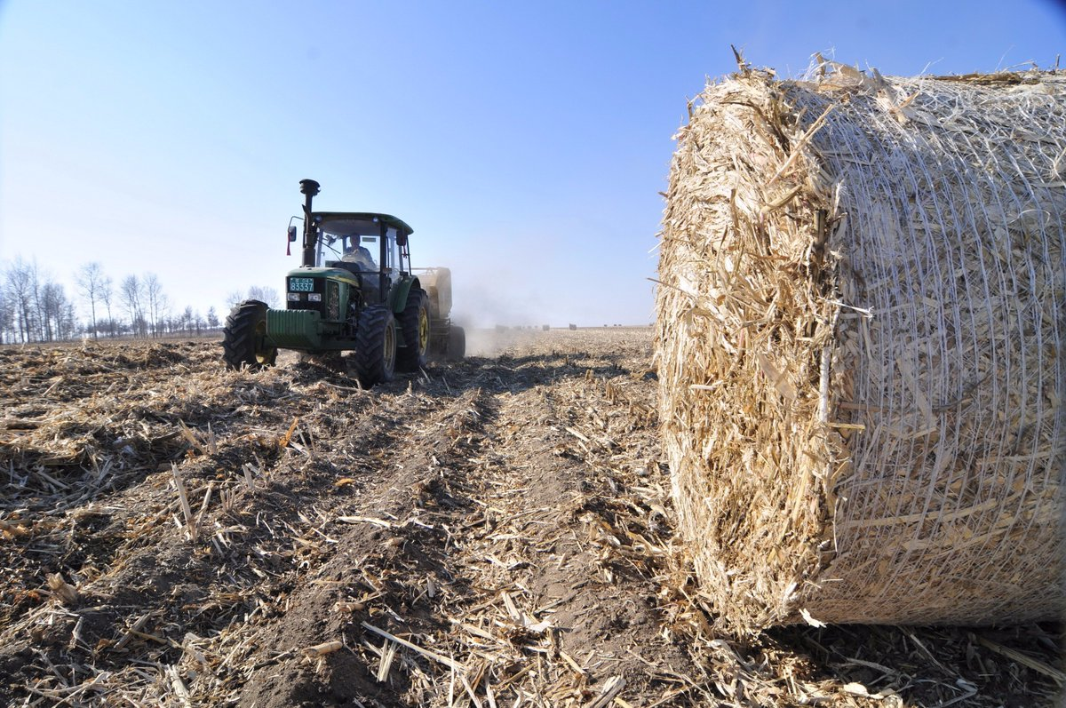 Technology and agriculture essay