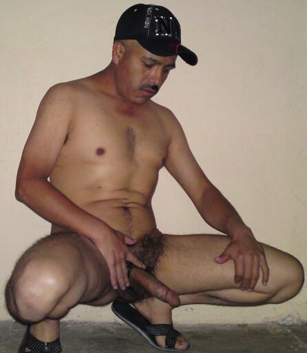 from Bruno li gay hamilton