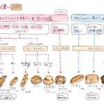 【保存版】フランスパンの種類多すぎ! ざっくりどんな種類があるのかまとめてみた。