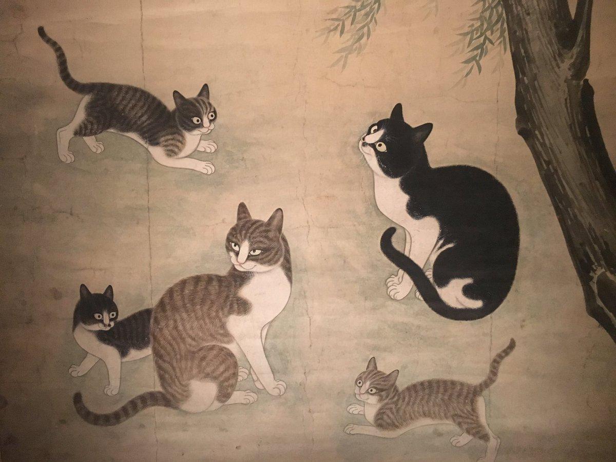 한국화에도 이렇게 고양이에 대한 사랑이 특별해 보이는 그림이 있었군요. 국립중앙박물관 상설관 : 작품명<버드나무아래 고양이> 작자미상,17세기 조선시대 작품 https://t.co/021vErh8I5