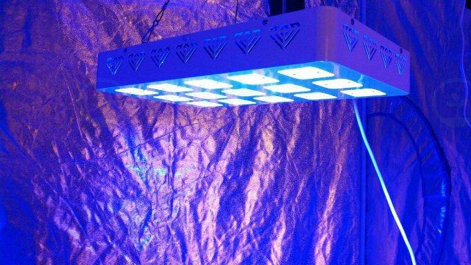 & Advanced LED Lights (@LED_Grow_Lights)   Twitter azcodes.com