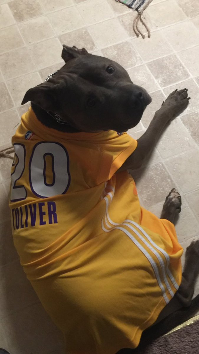 When your dog is rockin your jersey you MUST represent