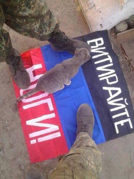 Олланд о Путине в книге журналистов Le Monde: Если он еще что-нибудь там сделает, то Украине дадут оружие и она войдет в НАТО - Цензор.НЕТ 2443