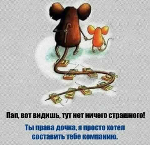 КСУ начнет рассматривать конституционность лишения Януковича звания Президента 19 октября - Цензор.НЕТ 1422