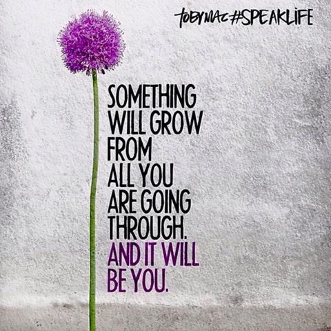It will all be worth it!  #JoyTrain #Joy #SelfLove #Growth #Healing #BeYou #MentalHealth #Anxiety #SuperSoulSunday <br>http://pic.twitter.com/qAuCvtx5td RT @jgeiger99