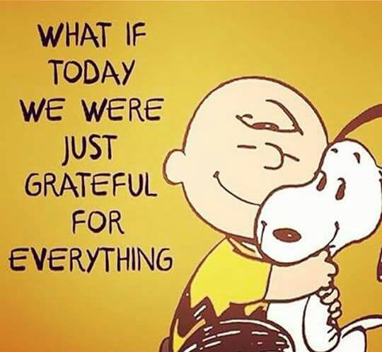 Image result for if today we were just grateful