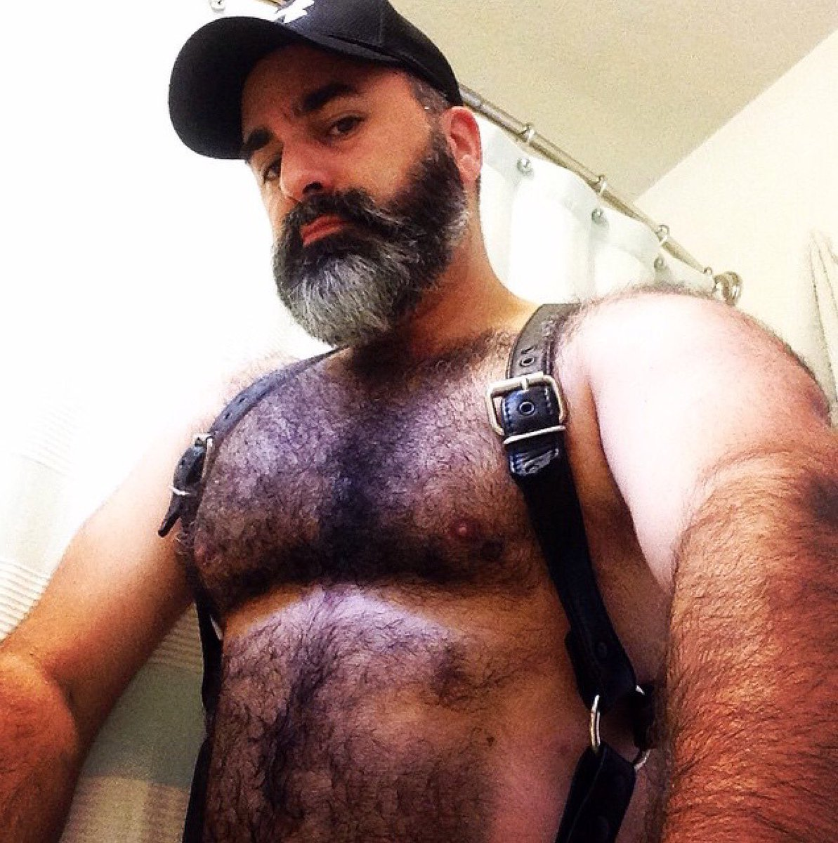 Gay bear men pictures