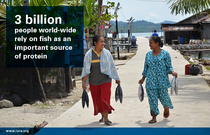 3 billion ppl worldwide rely on fish as an important source of protein. Let's properly manage our marine ecosystems https://t.co/2wI7DxfCUy